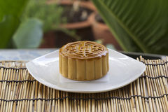Moon cake with golden lotus seed and macadamia nut filling Stock Images
