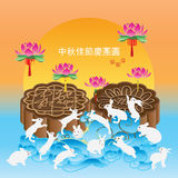 Moon cake many rabbit celebration Royalty Free Stock Image