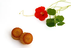 Moon cake and nasturtium Royalty Free Stock Photography