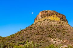 Moon In sky near rocky desert hill, covered with saguaro cactus. In Arizona`s Sonoran desert. Moon in the clear blue desert sky near rocky hillside covered with Royalty Free Stock Image