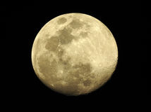 Moon with clear craters Royalty Free Stock Photos