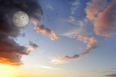 Moon Clouds Birds Royalty Free Stock Photos