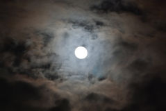 Moon in the cloudy night Royalty Free Stock Images