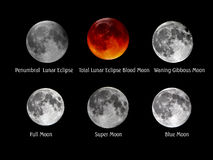 Moon Collection Royalty Free Stock Photography