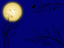Moon and creepy tree branches. Night scene with tree branches, bats and moon Stock Photo