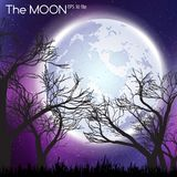 Moon in dark night background Stock Image