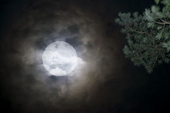 Moon on a dark night. Full moon in night sky over cloud. Moon on a dark night Royalty Free Stock Images
