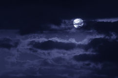 The moon on the dark sky Stock Image