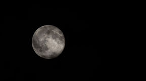 The moon. The day of the full moon Stock Photography