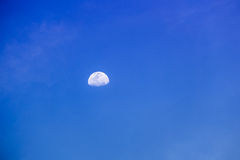 Moon at day Stock Photography