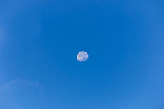 moon on day time Royalty Free Stock Photos