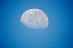 The moon on the day. The moon visible dering the day royalty free stock photos