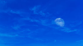 Moon on daylight Stock Images
