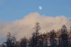 Moon in the daytime on a cloudy sky closeup Stock Photos