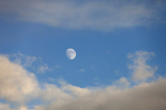 Moon at dusk Royalty Free Stock Photography