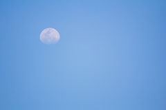 Moon in early in evening Stock Photos