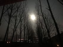 The moon on an early winter night. Early winter night, accompanied her to go out to press the road is also very good royalty free stock photography
