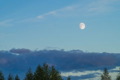 Moon in the evening sky Royalty Free Stock Photo