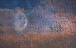 Moon Fall over Field. Of Grain Stock Photography