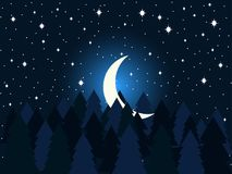Moon in the fir trees flat. Midnight, a crescent moon in the starry sky. Spruce forest. Vector. Illustration Stock Photo
