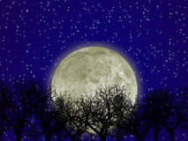 Moon and forest stock illustration