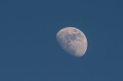 3/4 moon. 3/4 full moon on a blue sky with late day light Stock Images