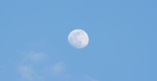 Moon. The full moon in the sky during the day Stock Images