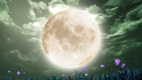 Moon i nattskyen Arkivbild