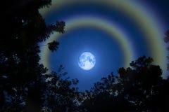 Moon il cielo variopinto della doppia dell'arcobaleno di alone erba della siluetta Fotografia Stock Libera da Diritti