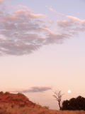 Moon in Kgalagadi Transfrontier Park Royalty Free Stock Photos