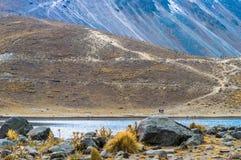 Nevado di Toluca Mexico. Moon Lagoon in the Nevado di Toluca Vulcano stock image