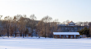 The moon lake park-2. The moon lake park after the heavy snow in winter Royalty Free Stock Photo