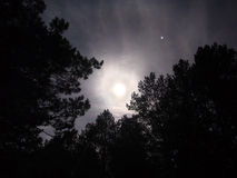 Moon light on night sky royalty free stock image