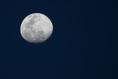 Moon, Madikwe Game Reserve Stock Image