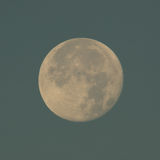 Moon in the morning sky Royalty Free Stock Image