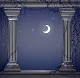 Moon Nacht und zwei Marmorsäulen mit Liane, romentic Nachtplatz im alten Garten, Theaterdekoration, stock abbildung