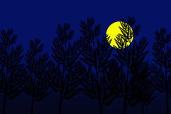 Moon in the night Stock Images