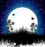 Moon night Stock Images