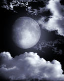 Moon in the night Royalty Free Stock Images