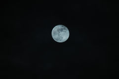 Moon in the night Royalty Free Stock Photography