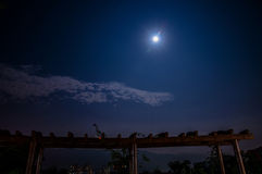 Moon in night Royalty Free Stock Photo