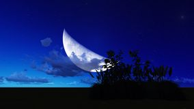 Moon night Royalty Free Stock Image