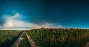 Moon In Night Starry Sky Above Landscape With Rural Country Road Through Green Corn Field And Meadow. Maize Corn