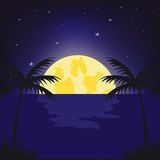 Moon night in tropic Stock Images