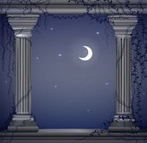 Moon night and two marble columns with liana, romentic night place in the ancient garden, theater decoration,. Vector Stock Image