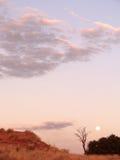 Moon no parque internacional de Kgalagadi Fotos de Stock Royalty Free