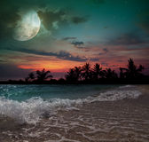 Moon, ocean and palm trees Royalty Free Stock Photography