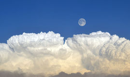 Moon over clouds. A full moon over a bank of storm clouds Royalty Free Stock Photo