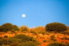 Moon over the desert. The full moon rising over the desert dunes royalty free stock image