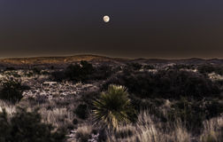 Moon over Desert. Full moon rising over the desert landscape near Carlsbad New Mexico Royalty Free Stock Photography